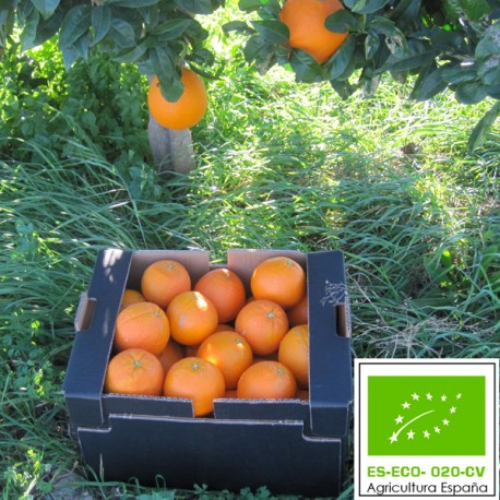 Naranja Navelina Ecológica 15 Kg