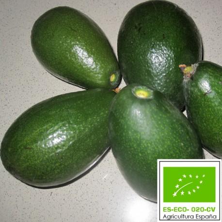 Aguacate Criollo Ecológico 5 Kg